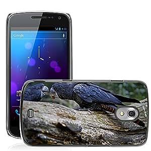 Etui Housse Coque de Protection Cover Rigide pour // M00108171 Cockatoo Rojo Atado Cockatoo // Samsung Galaxy Nexus GT-i9250 i9250
