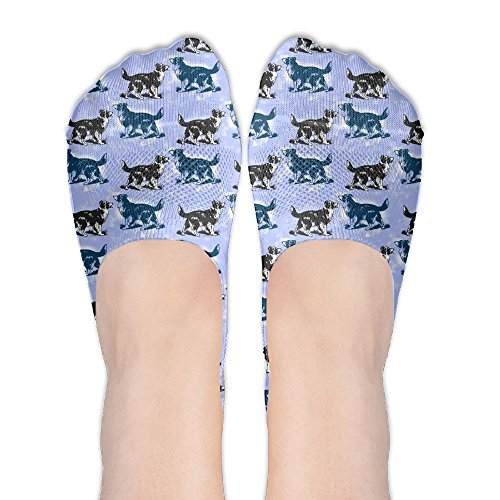 Border Collies Blue Dog Women's No Show Socks Pattern Low Cut Liner Casual Athletic Ankle Socks For Sneakers,Booties