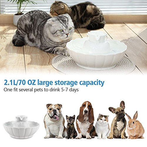 IPETTIE Tritone Ceramic Pet Drinking Fountain丨Ultra Quiet, Way Better Than Plastic丨Water Fountains for Cats and Dogs 2.1 Liters Pet Water Dispenser with Replacement Filters and Foam, Color White