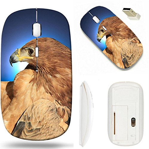MSD Wireless Mouse White Base Travel 2.4G Wireless Mice with USB Receiver, Noiseless and Silent Click with 1000 DPI for notebook, pc, laptop, computer, mac book design 28424228 Tawny Eagle Wildlife Ba (Tawny Eagle)