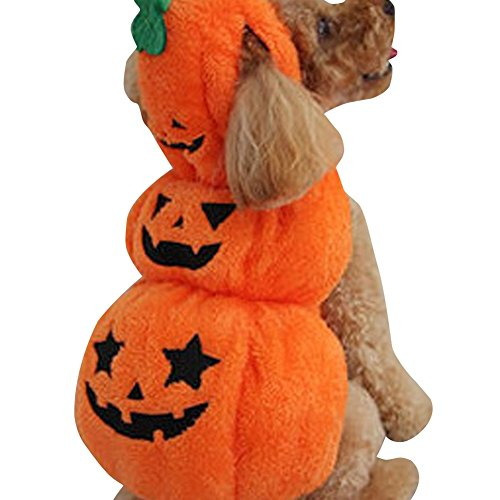 Halloween Clipart Costume (JudyBridal Pumpkin Costumes for Dogs Pets Dog Clothes Cosplay for Halloween XXL)