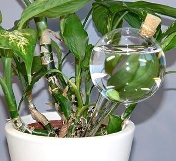 4 Stück Durstkugel Bewässerungskugel Durstkugeln mit Korken Top Qualität