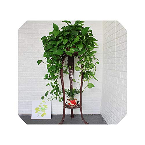 European Flower Rack Wrought Iron Multi Layer Indoor Floor Standing Green Flower Shelf Living Room Storage Balcony Meat Home,105cm (Best Bamboo Flooring Brand Australia)