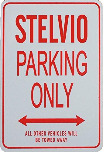 Amazon.com: STELVIO PARKING SOLAMENTE – Miniatura divertida ...