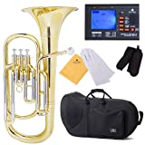 Cecilio Lacquered Yellow Brass Bb Baritone Horn and Tuner, Case - BR-380+92D