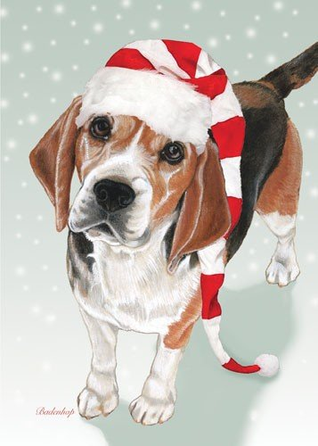 C720 Paper - Pipsqueak Productions C720 Beagle Christmas Boxed Cards - Pack of 10