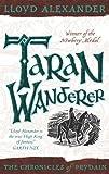 Taran Wanderer (Chronicles of Prydain)
