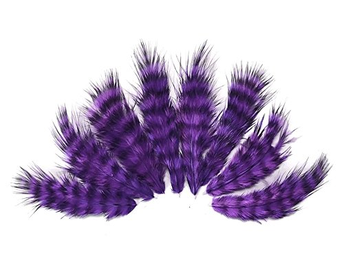 Moonlight Feather, Craft Feathers - Rooster Fluff Feathers - Purple Color, 12 Per Pack (Genetics Of Chicken Colours)