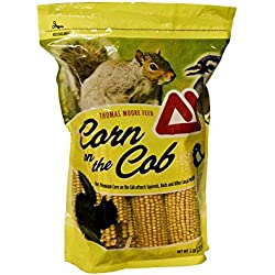 TMF Premium Quality Corn on the Cob , 5 lb