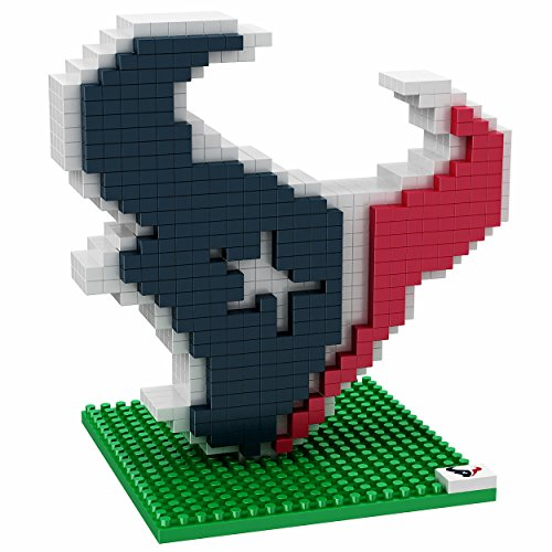 Texans Fan - 7