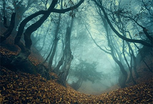 Laeacco 10x7ft Halloween Theme Backdrop Vinyl Twilight Misty Forest Path Fallen Leaves Photography Backgroud Ghastly Wood Child Baby Photo Shoot Props Jungle Curvy Trees Foggy -