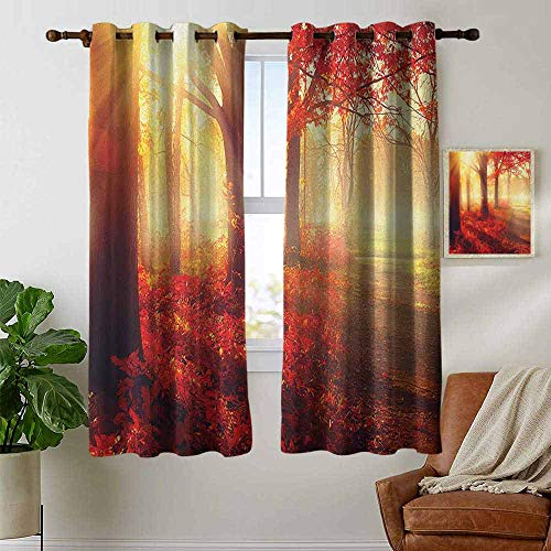 petpany Living Room Curtains Woodland,Sun Beams Through Misty Old Forest in Fall Season Morning View Dreamy Picture, Yellow Red,Adjustable Tie Up Shade Rod Pocket Curtain ()