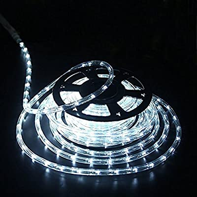 DINGFU Upgraded 100 Feet Rope Lights,2-Wire Low Voltage LED Rope Lights Kit, Indoor Outdoor Rope Lighting for Background,Yard,Garden,Bridges Decoration with UL