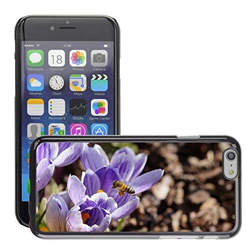"""Bild Hart Handy Schwarz Schutz Case Cover Schale Etui // M00134491 Pollen Bee sammeln Pollen // Apple iPhone 6 PLUS 5.5"""""""