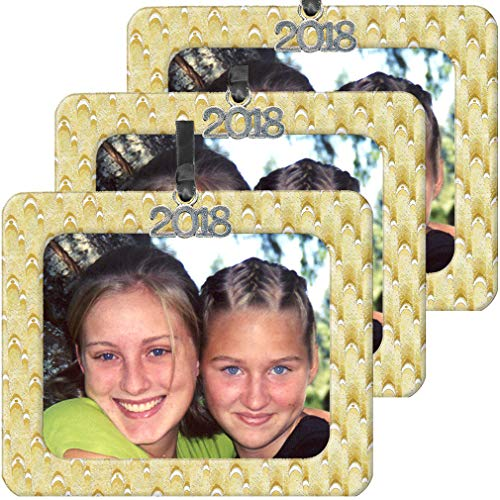 - 2018 Magnetic Iridescent Foil Photo Christmas Ornament, Gold-Silver Blended Design with Black Satin Accent Ribbon for Hanging, Includes Non-Glare Photo Protector - Horizontal - 3 Pack