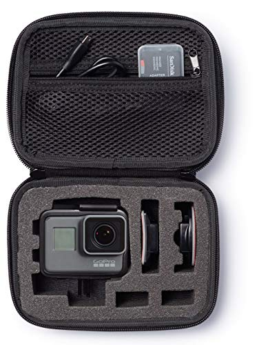 AmazonBasics GoPro Carrying Case