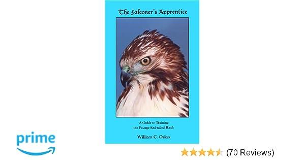 The Falconers Apprentice The Falconers Apprentice Series