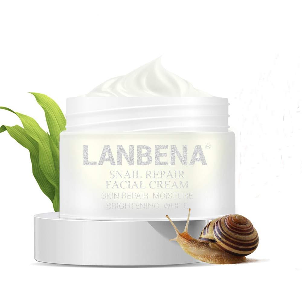 LANBENA Snail Facial Acne Repair Care Cream Day Cream Anti Wrinkle Anti Aging Moisturizing Firming