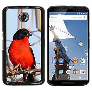 YOYOYO Smartphone Protección Defender Duro Negro Funda Imagen Diseño Carcasa Tapa Case Skin Cover Para Motorola NEXUS 6 X Moto X Pro - rojo azul de invierno negro rama de árbol naturaleza