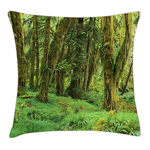 HFYZT WA, Olympic NP, Quinault Rain Forest Throw Pillow Cover 18x18 Inch Two Sides Design Printed Pillowcase