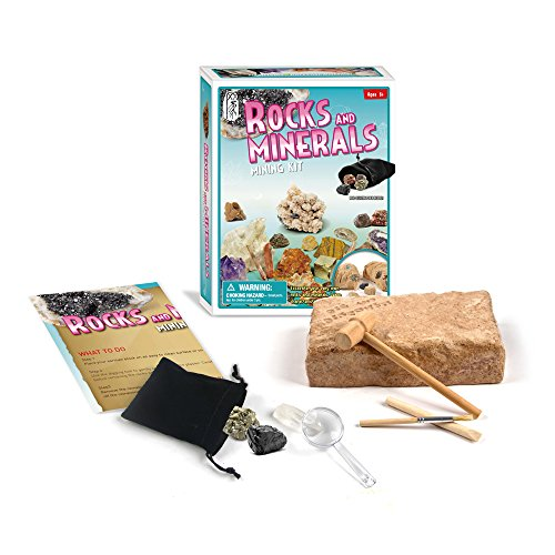 Wow! Rock Mineral Gem Dig Kit