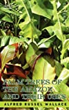 Palm Trees of the Amazon and Their Uses, Alfred R. Wallace, 1602066353