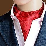 MENDENG Mens Paisley Jacquard Woven 100% Silk Cravat Party Necktie Formal Ascot