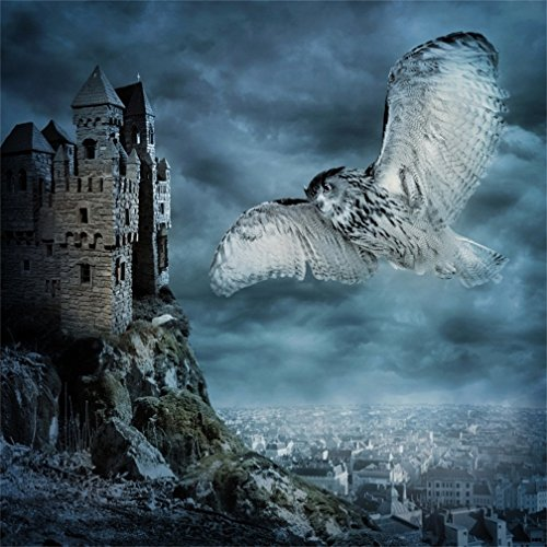 CSFOTO 5x5ft Background for Evil Castle Winged Owl Background Scary Terrible Halloween Photography Backdrop Horror Night Party Decoration Blurry City Child Kid Photo Studio Props -