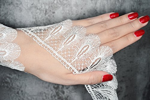 Absolute Magic Full Three (3) metres Long Vintage Peacock Featherd Style White Embroidered Lace Trim Ribbon Approx. 9.0 cm Width (White JX40412)