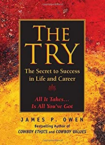 The Try: The Secret to Success in Life and Career by James P. Owen (2013-06-26)
