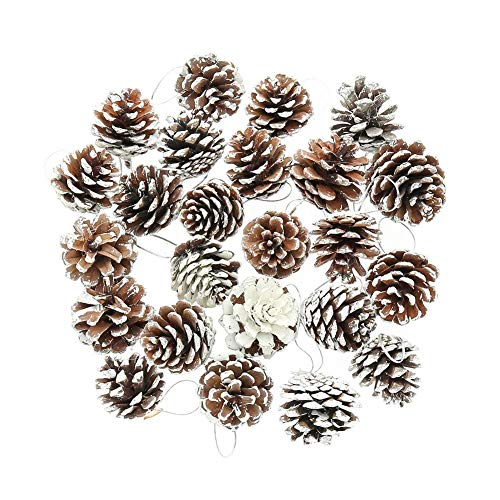 DSSY 30 Pieces 1.57 Inch Christmas Pine Cones Ornament Natural PineCones with String Pendant Crafts for Gift Tag Christmas Tree Party Hanging Decoration(White) (Natural Decorating Christmas)