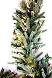 Pre-Lit Mountain Fir & Pine Garland 100 Clear Lights 9ft x 12in (Small Image)