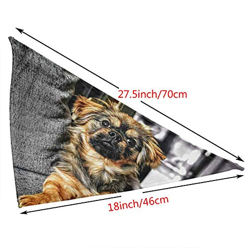 Custom Made Triangle Bibs Dog,Pet Supplies Accessories for Pet Puppy Dog Cat-Dog Dogs Pug Puppies Puppy Sleeping Sweet My Nemo Pattern Printing Colorful