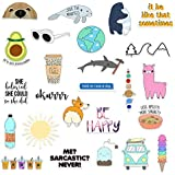 RipDesigns - 25 VSCO Stickers for Water Bottles, Laptops (Series 8)