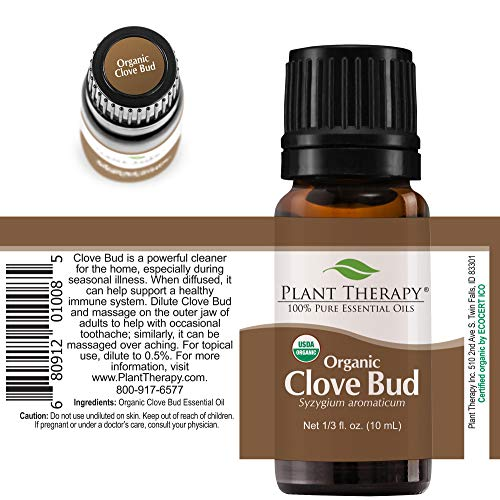 Plant Therapy Clove Bud Organic Essential Oil 100% Pure, USDA Certified Organic, Undiluted, Natural Aromatherapy, Therapeutic Grade 10 mL (⅓ oz)