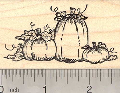 Pumpkin Patch Rubber Stamp, Halloween or Fall Series -