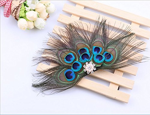 Leiothrix Hair Barrettes Peacock Feather Hair Clip Hair Accessory for Women and Bride Apply to Party Stage -