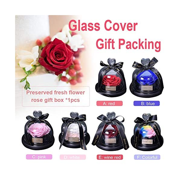 Preserved-Rose-Flower-in-Glass-Dome-Never-Withered-Handmade-Fresh-Upscale-Immortal-Flowers-Eternity-Rose-Gift-for-Valentines-Day-Mothers-Day-Christmas-Birthday-Anniversary-Rainbow