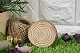 Unfinished Wood Slices - 50-Pack Natural Wood Circles, Wooden Log Slices, 3-Inch Diameter, 0.35 Inch Thick