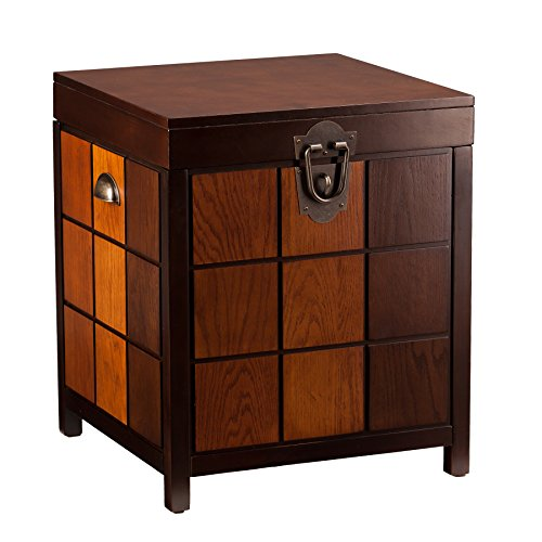 Southern Enterprises Hendrik Storage Trunk End Table, Espresso and Multi-Tone Finish -