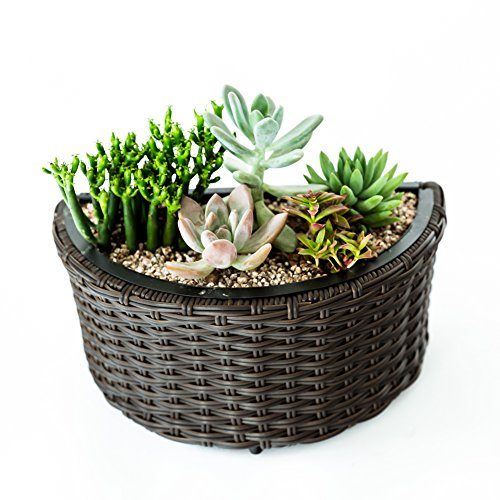 C-Hopetree Indoor Outdoor Flower Plant Box Succulent Planter Pot, Fence Hanging Garden Patio Planter Container Brown, Half Round (Half Moon Rattan Furniture)