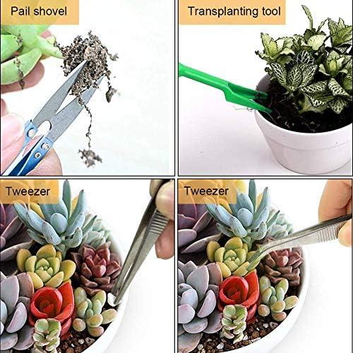 Queta 12Pcs Outils pour Bonsaï, Kit Outils de Jardinage Outil à main de Plantation pour plante en pot succulente, Cactus - comprend Petit Sécateur, Râteau, Ciseaux, Pelles, Déplantoirs, Pincettes etc.