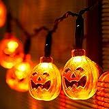 Choklin Pumpkin Halloween Lights String, 9.51ft - 20 LED - Battery Powered - Halloween Decoration Lights for Indoor & Outdoor, Orange (Not Include Battery)