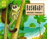 Bushbaby (Happy Cat Books)