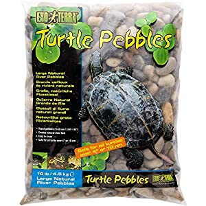 Exo Terra Turtle Pebbles 14
