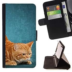 Momo Phone Case / Flip Funda de Cuero Case Cover - Gato American Shorthair Jengibre Rojo Amarillo; - Sony Xperia M2