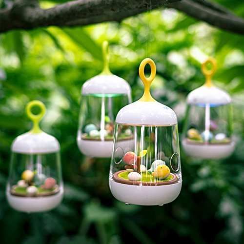 (BIN BON - Creative Birdcage LED Music Box Night Light USB Rechargeable Touch Dimmer Table bird light Portable Nightlamp for Children Baby)