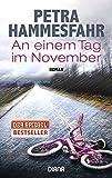 An einem Tag im November: Roman