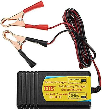 CALALEIE Cargador de batería eléctrico de la vespa de la bicicleta ...