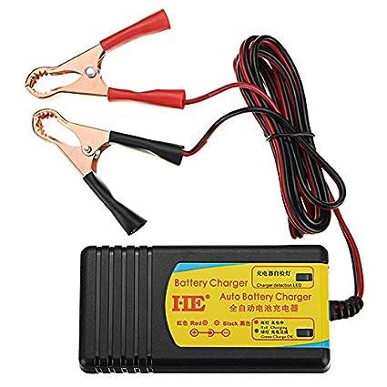 HobbyAnt - Cargador de batería para bicicleta eléctrica (24 ...